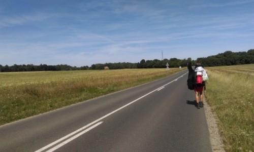 FRANCJA / Bordeaux / okolice Bordeaux / W drodze