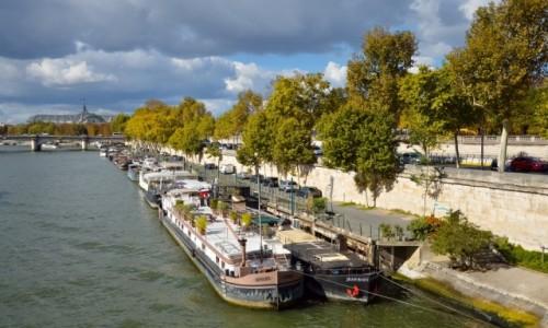 Zdjecie FRANCJA / - / Paryż / Spacer Nad Sekwaną