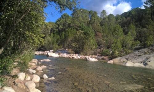 Zdjecie FRANCJA / Korsyka / rzeka Cavu / ICAN4x4
