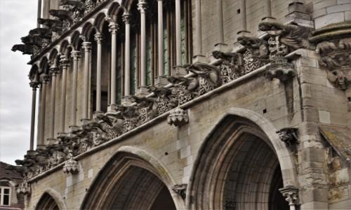 Zdjecie FRANCJA / Burgundia / Dijon / Dijon, Notre Dame