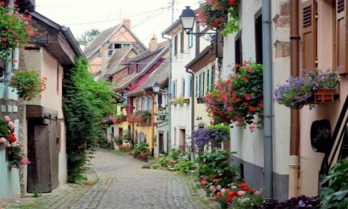 Zdjecie FRANCJA / Alzacja / Eguisheim / cała w kwiatach...
