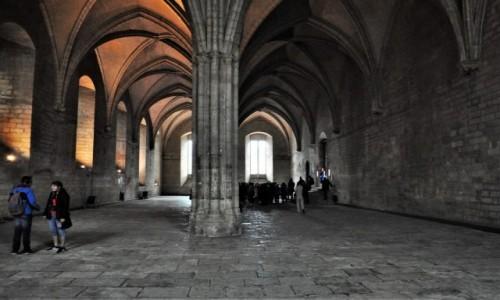 Zdjęcie FRANCJA / Prowansja / Avignon / Avignon, pałac papieży z XIV w.