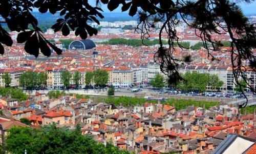 Zdjecie FRANCJA / Owernia-Rodan-Alpy / Lyon / Lyon
