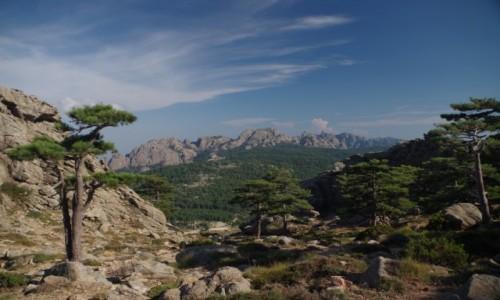 Zdjecie FRANCJA / Korsyka / Regional Natural Park of Corsica / Park Narodowy Korsyki