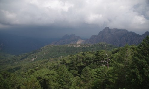 Zdjecie FRANCJA / Korsyka / Parc Naturel Régional de Corse / Parc Naturel Régional de Corse