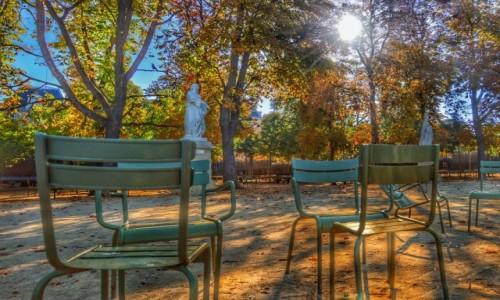 Zdjecie FRANCJA / - / Paryż / Jak jesień to tylko w Paryżu;)