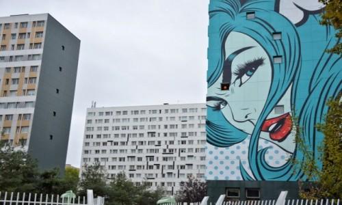 Zdjecie FRANCJA / - / Paryż / Street Art 13 dzielnica