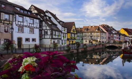 FRANCJA / Grand Est / Alzacja  / Colmar  / Colmar