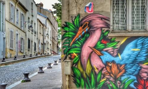 Zdjecie FRANCJA / - / PARYŻ / Paris13