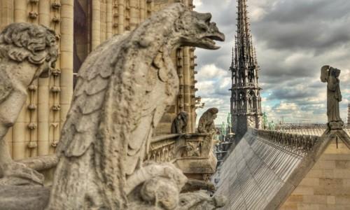 Zdjecie FRANCJA / - / PARYŻ / Na dachu Notre Dame