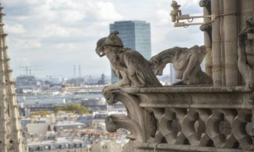 Zdjecie FRANCJA / - / PARYŻ / Oglądacze Notre Dame