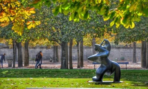 Zdjecie FRANCJA / - / PARYŻ / W ogrodzie Tuileries