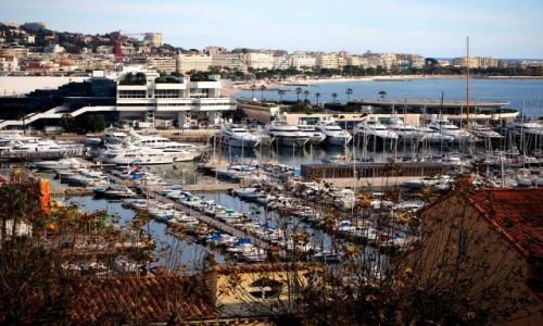 Zdjęcie FRANCJA / Lazurowe wybrzeże / Cannes / Cannes