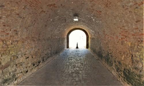 Zdjęcie FRANCJA / Alzacja / Lauterbourg / Lauterbourg, zakamarki, fortyfikacje
