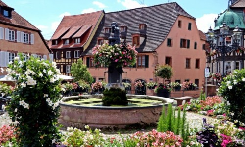 Zdjecie FRANCJA / Alzacja / Barr / Kwieciste miasteczko w Alzacji