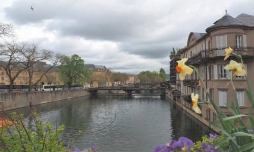 Zdjecie FRANCJA / Lotaryngia / Metz / wiosenny Metz...