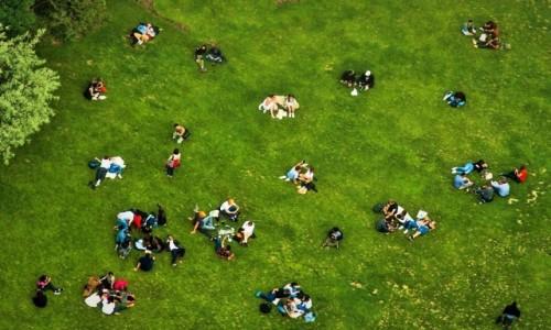 Zdjecie FRANCJA / Paryż  / Paryż / picnic pod wieżą