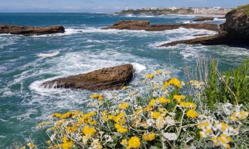 FRANCJA / Nowa Akwitania / Biarritz / Pocztówka z wakacji ;-)
