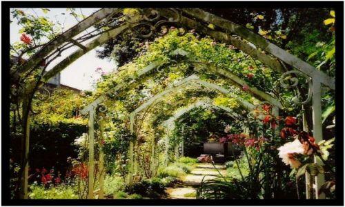 Zdjecie FRANCJA / Poitou-Charente / brak / rajski ogród w środku miasta