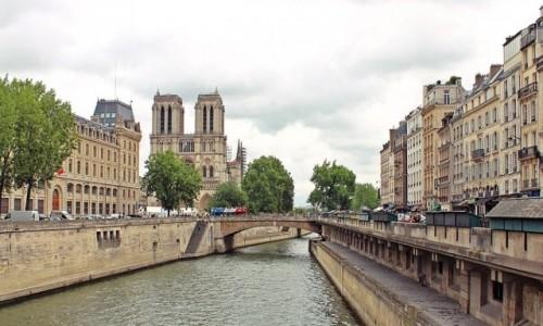 Zdjecie FRANCJA / - / Paryż / Katedra