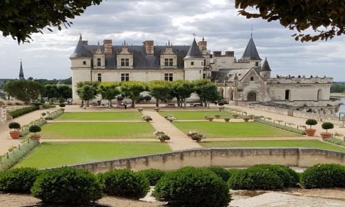Zdjecie FRANCJA / Dolina Loary / Château d'Amboise / Pocztówka znad Loary