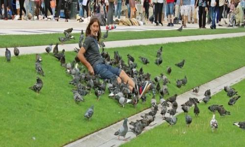 Zdjecie FRANCJA / - / Paryż / Siedzący z ptakami