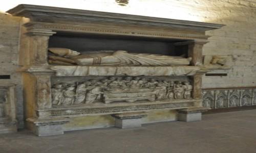 Zdjecie FRANCJA / Nad Rodanem / Avignon / Avignon, zamek, sargofag