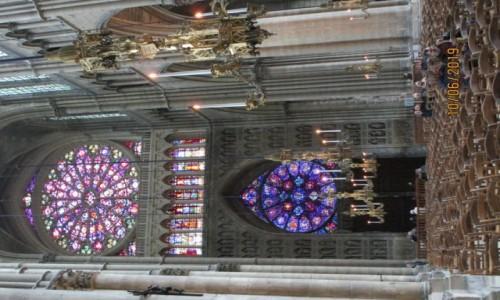 Zdjecie FRANCJA / Grand Est / Katedra w Reims / Witraże widziane od wnętrza katedry