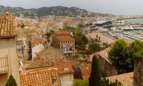 Zdjecie FRANCJA / Lazurowe Wybrzeże / Cannes / Cannes