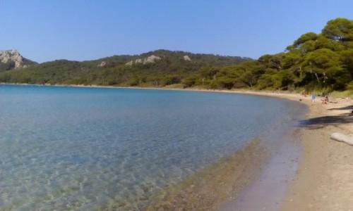 Zdjecie FRANCJA / Lazurowe Wybrzeże / Porquerolles / Plaża na Porquerolles