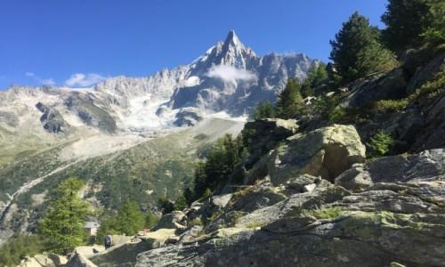 Zdjecie FRANCJA / - / rejony Chamonix / Górskie rejony