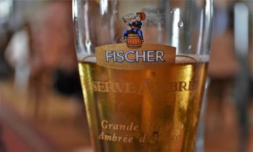 Zdjęcie FRANCJA / Alzacja / Hunspach / Hunspach, piwo