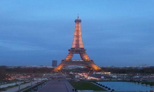 Zdjecie FRANCJA / brak / Paryż / Wieża Eiffla