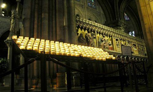 Zdjecie FRANCJA / brak / Paryż / W Notre-Dame