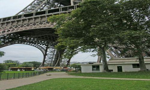 Zdjecie FRANCJA / brak / Paryż / U podnuża wieży Eifla