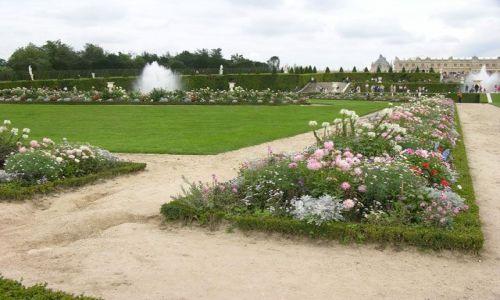 Zdjecie FRANCJA / brak / Paryż / W Wersalu