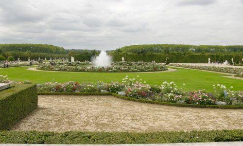 Zdjecie FRANCJA / brak / Paryż / Ogród Wersal