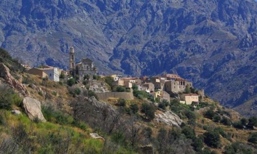 Zdjęcie FRANCJA / Korsyka/Balagne / Montemagiore / Na grzbiecie