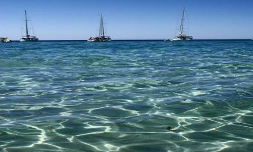 Zdjecie FRANCJA / Korsyka / Saleccia / Na linii horyzontu