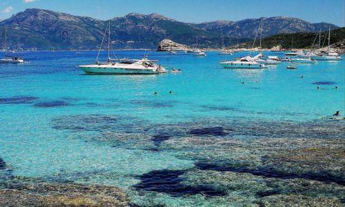 Zdjęcie FRANCJA / Korsyka / Agriates/Saleccia / W toni