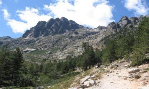 Zdjecie FRANCJA / Korsyka / Restonica, okolice Corte / Park Narodowy Restonica