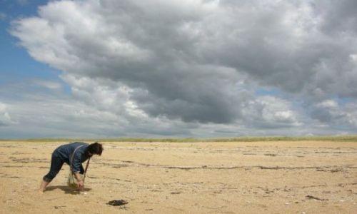 Zdjęcie FRANCJA / Bretania / Okolice Vannes / Nad Atlantykiem