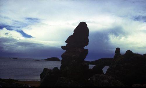 Zdjęcie FRANCJA / Bretania / płd Bretanii / rzeźby nad Atlantykiem
