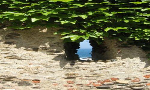 Zdjecie FRANCJA / Langwedocja / Collioure / ....widok na morze...