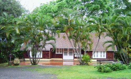 Zdjęcie FRANCJA / Martynika / W głębi wyspy / Chata w palmach