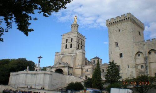 Zdjecie FRANCJA / prowansja / Avignon / Cattedrale Nostra Signora de Doms.