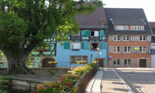 Zdjecie FRANCJA / Alzacja / Colmar, Kaysersberg, Riquewihr / miasteczka na szlaku wina