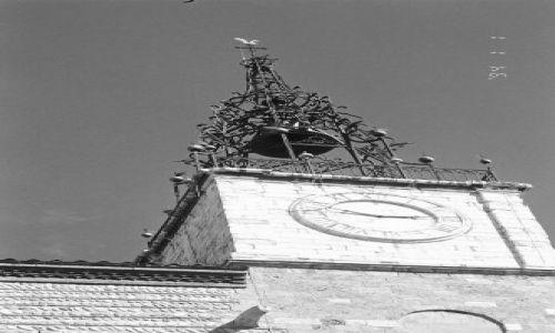 FRANCJA / Katalonia / Południowa Francja / Perpignan - katedra św. Jana
