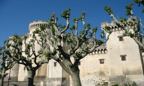 Zdjęcie FRANCJA / Prowansja / Tarazcon / Średniowieczna twierdza