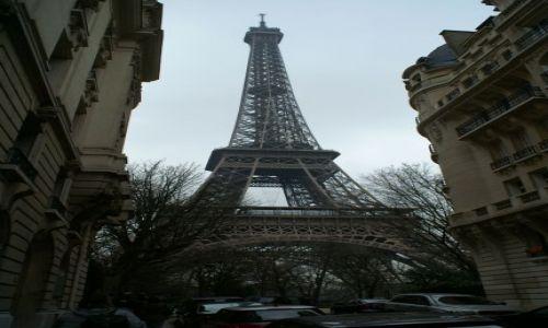 Zdjecie FRANCJA / Paryż / Wieża Eiffla / Piękna...